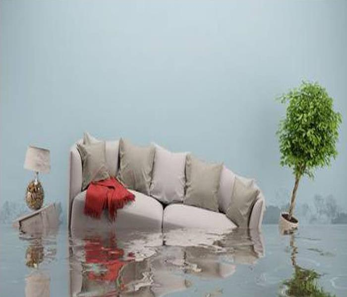 Couch, lamp and plant floating in room filled with water