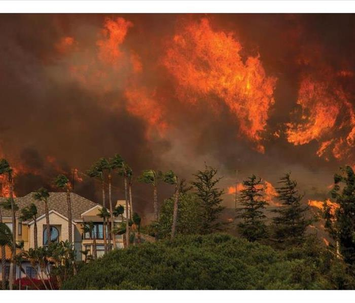 Fire Damage Home Ignition Zones and Wildfires