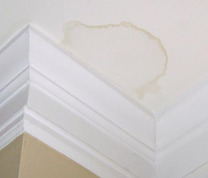 Water Damage Don't Ignore Water Stains!