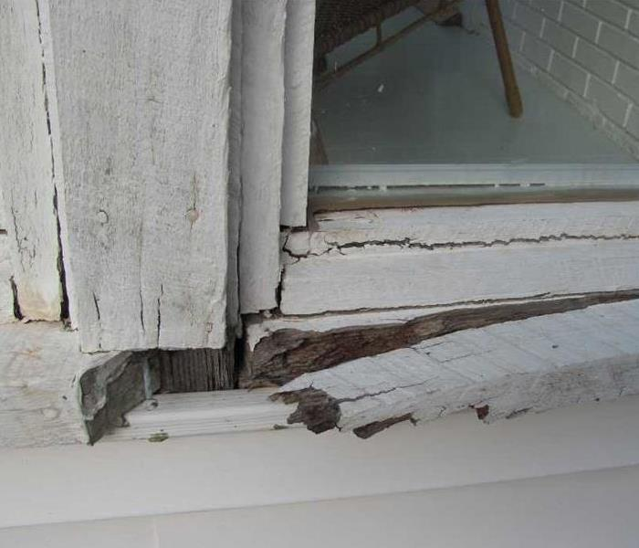 Water Damage Dangers of Rotted Wood
