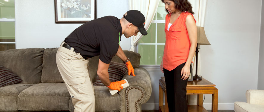 Newton, MA carpet upholstery cleaning