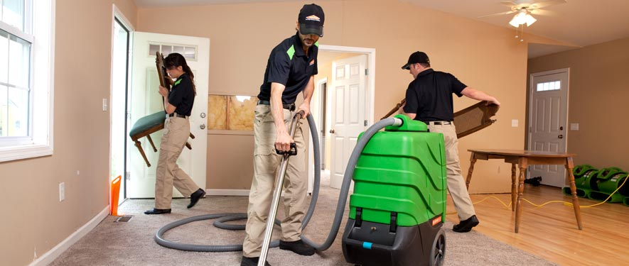 Newton, MA cleaning services